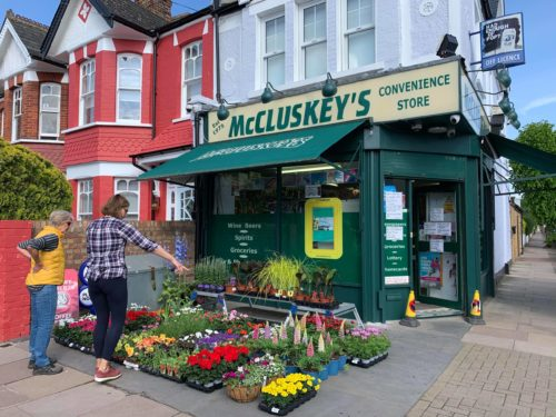 Now Offering Flowers, Plants & Bedding